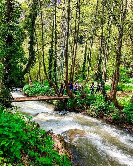 🇱🇧🍃🌴🌿🍀🌿🌴🍃🇱🇧nature naturephotography view family trip vacation... (Wadi Qannubin, Liban-Nord, Lebanon)
