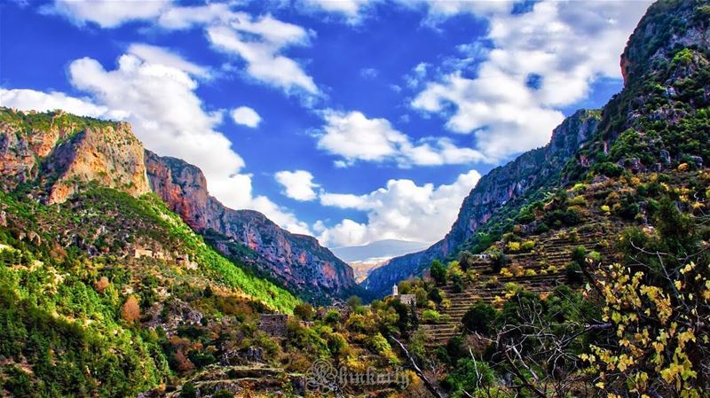 Look deep into nature, and then you will understand everything better. ...... (Wadi Qannubin, Liban-Nord, Lebanon)