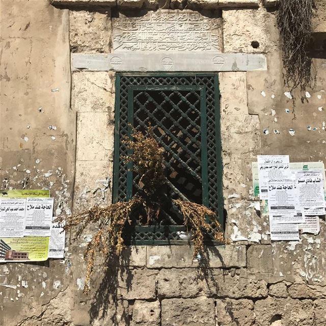 trablous طرابلس livelovetripoli northlebanon blogbaladi ... (Trâblous, Liban-Nord, Lebanon)