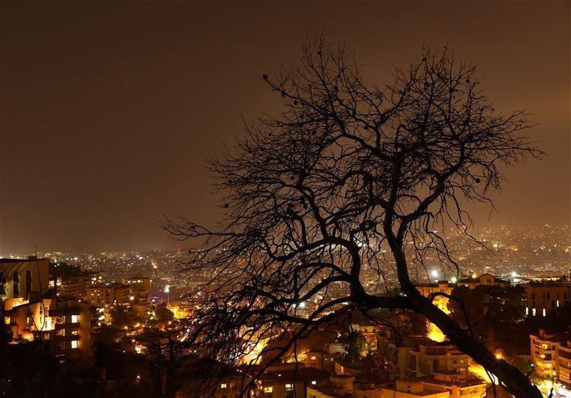 ✨.... photography photographer photooftheday picoftheday... (Baabda)