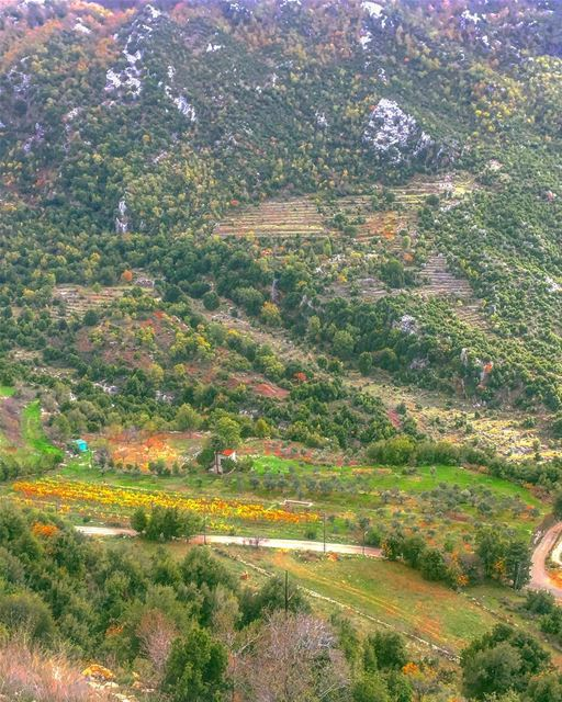 The Earth is all we have in common 🍃💚🍃 .......... nature ... (Ehmej, Mont-Liban, Lebanon)