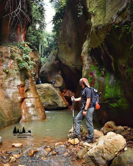 Hiking under the rain ?🍃------------------------------------------------- (Lebanon)