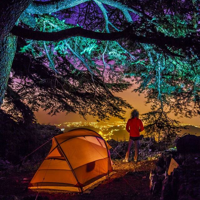camping cedars light tent village night photography lebanon ... (Arz Jaj)