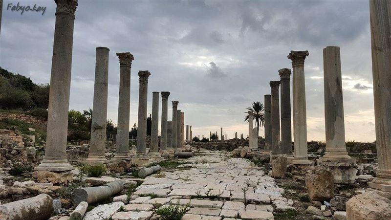 ------------------------------------------------------------------ libano... (Tyre, Lebanon)