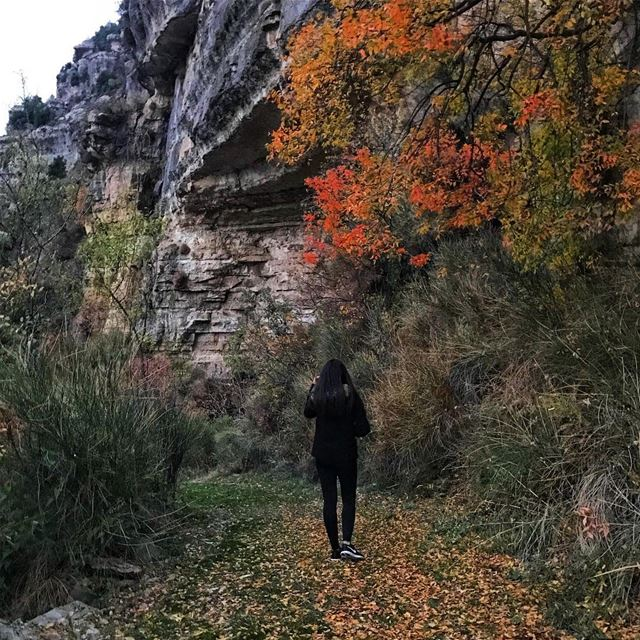 Falling for fall 🍁🍂📷 @faridmoubarak (Jord el Aaqoûra)