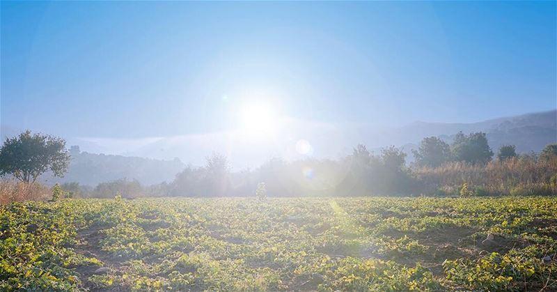 🌳☀️⛰ mountains sun shining landscape lebanon lebaneseview...