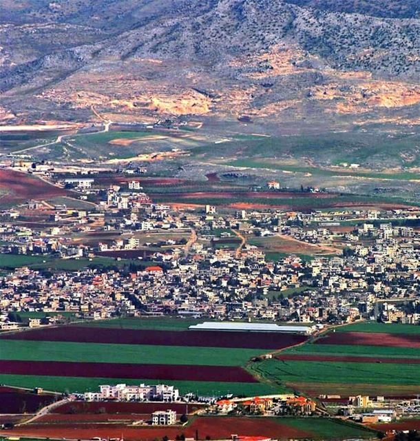 I love those connections that make this big old world feel like a little... (Beqaa Governorate)