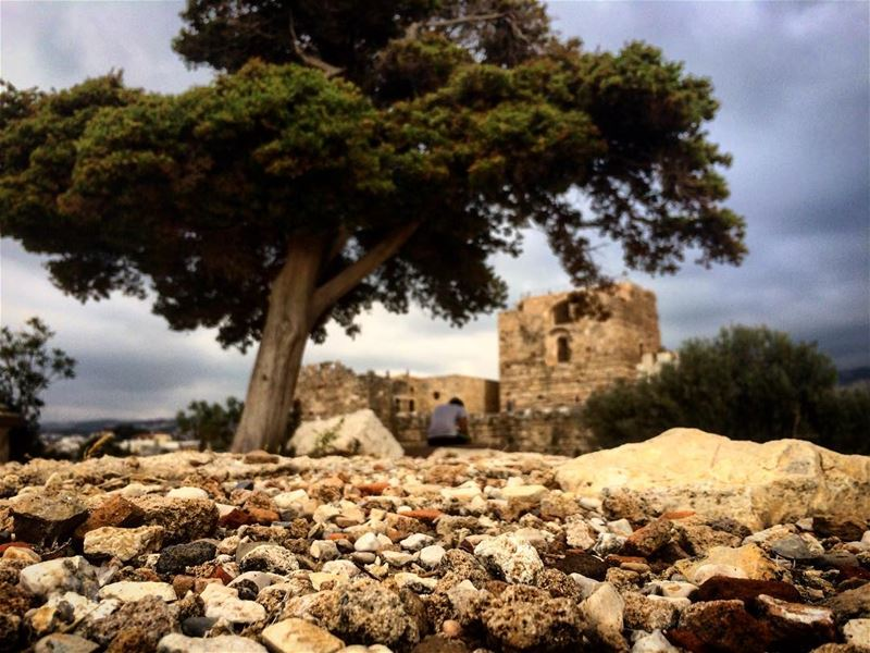 Anything that costs you your peace is too expansive. 🏛🌳 ... (Byblos Castle)