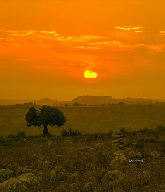 sunsets sunset_hub sunsetporn sundown sunsetlovers ig_sunsetshots... (Lebanon)