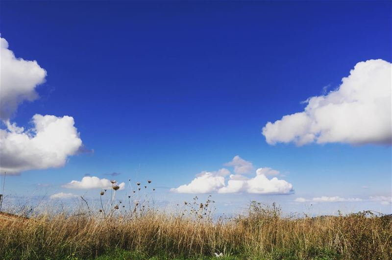 Beautiful mornings has beautiful skies 💙 landscapephotography lebanon ...