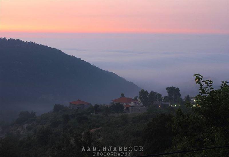🔹🔹🔹🔹🔹 insta_lebanon igpowerclub Super_Lebanon ig_lebanon ... (Baslou2it)