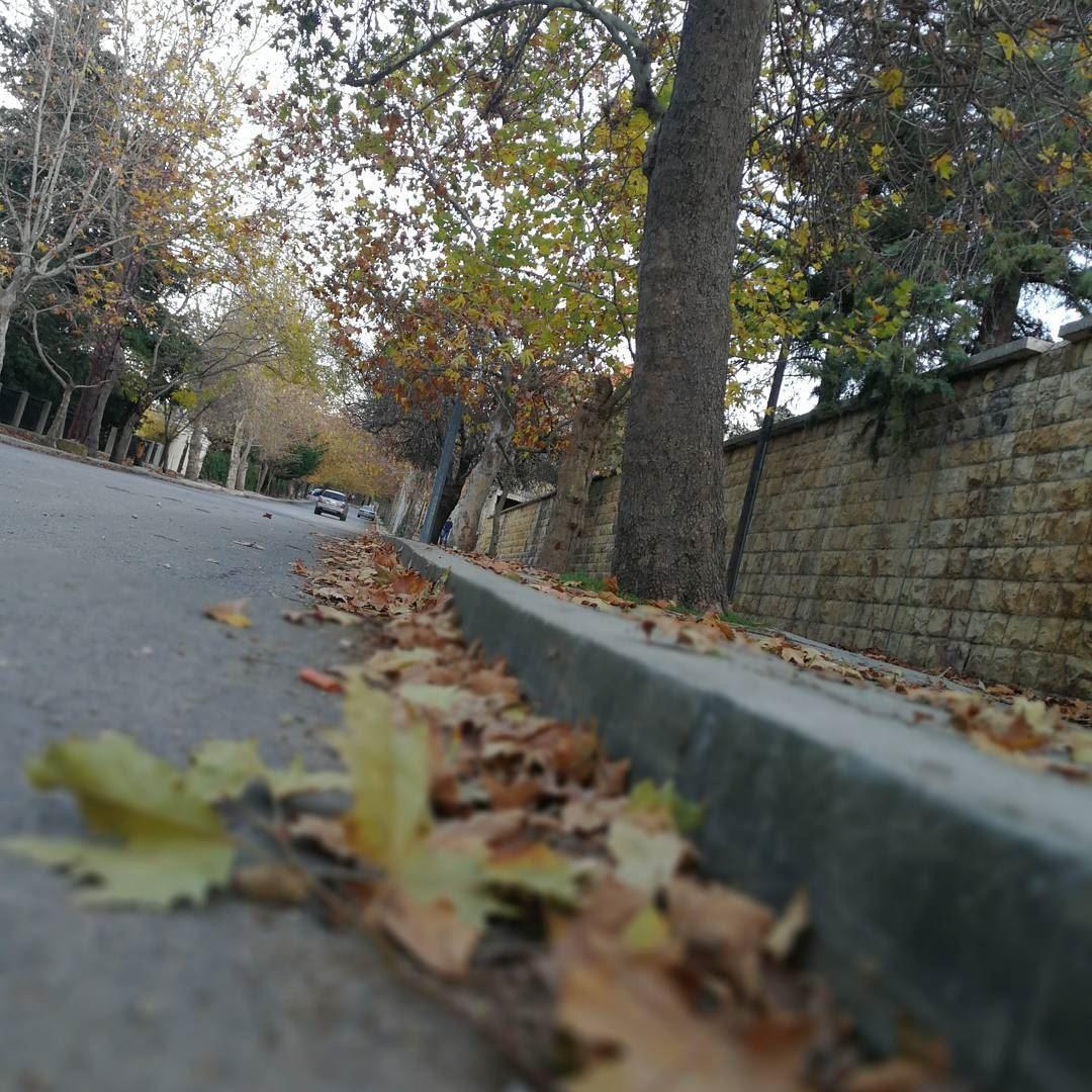 orange autumn photooftheday fall leaf foliage red beauty seasons ... (Sawfar, Mont-Liban, Lebanon)