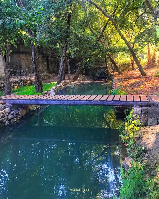 Go ahead.. You never know what could be on the other side 🍃 (Chouf)