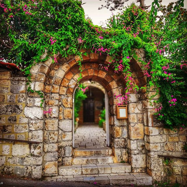 """LoveHas a way of wiltingOr blossomingAt the strangest,Most... (Byblos - Jbeil)"