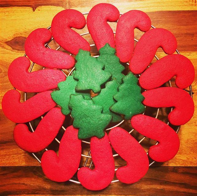 Hello Christmas 🎄 Get Your Cookies Now At @patzeesbakes. christmas ... (Beirut, Lebanon)