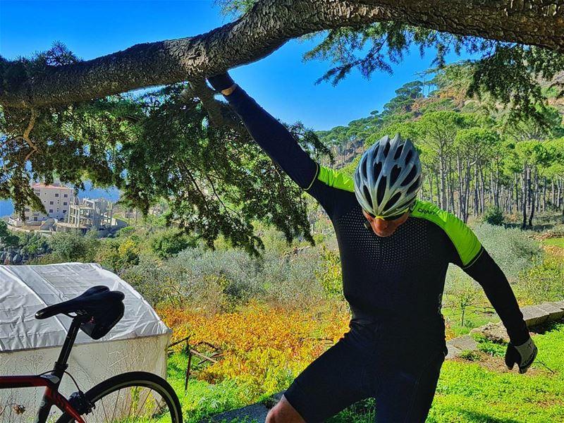 cyclinglife cycling cyclingday cyclingcompany cyclingpics ... (Swings)