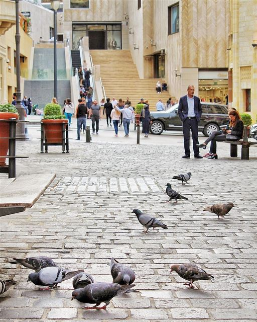 Lovely lazy Sunday 💙By @buddcorp DowntownBeirut BeirutDowntown Beirut... (Downtown Beirut)