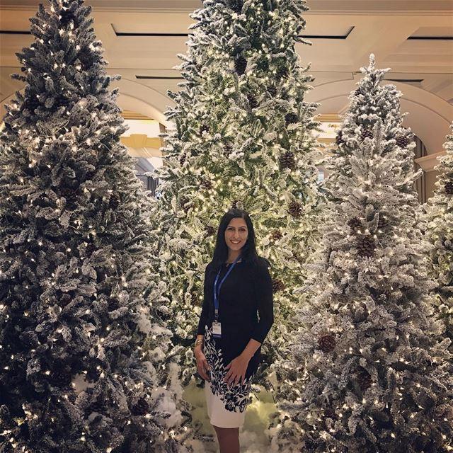 Christmas tree lebanon phoenicia_hotel ... (Phoenicia Hotel Beirut)