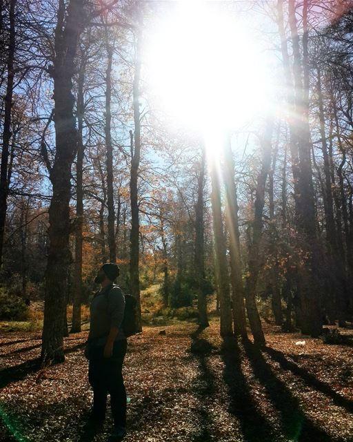 withhim liveloveakkar hiking wildernesslebanon wildernessculture ...