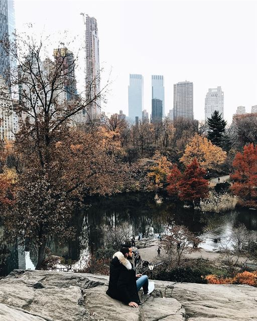 Winter is almost here ❄️🏙 NYC NewYorkCity NewYork midtown fall ... (Central Park)