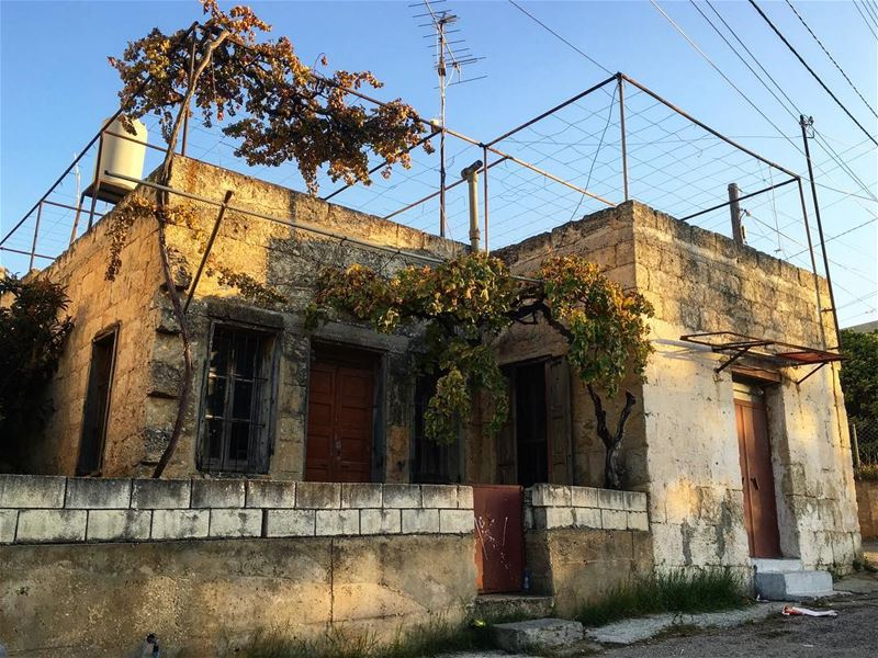 Goodmorning from maghdouche lebanon lebanese oldhouse oldhouses ... (Maghdoûché, Liban-Sud, Lebanon)