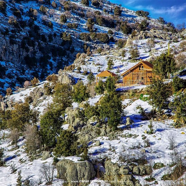 Nature White Dress._ Tannourine Lebanon snow nature landscape ... (Arz Tannoûrîne)
