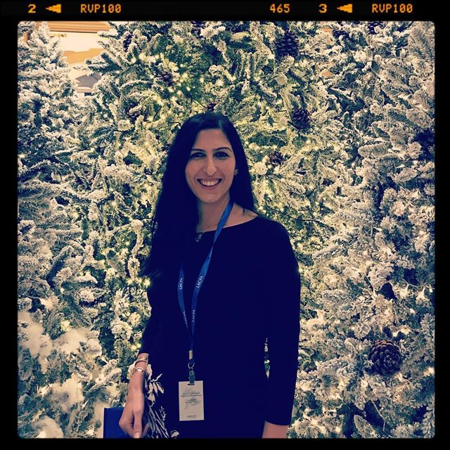Christmas tree lebanon phoenicia_hotel lacpa Lacpa accounting ... (Phoenicia Hotel Beirut)