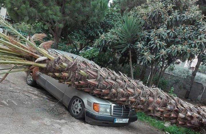 العاصفة تضرب طرابلس.. ثلوج وأضرار⠀⠀⠀⠀⠀⠀⠀⠀⠀ ⠀⠀⠀⠀⠀⠀⠀⠀⠀⠀⠀⠀ ⠀⠀⠀⠀⠀⠀⠀⠀⠀⠀⠀⠀ ⠀⠀⠀⠀⠀