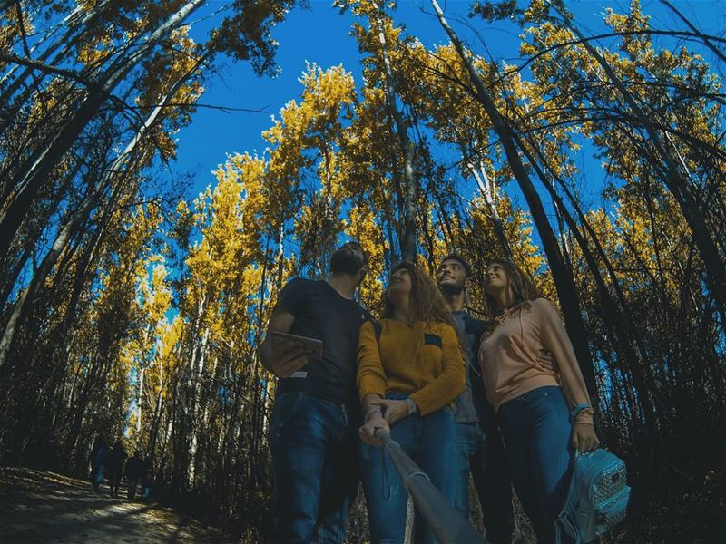 💛.. fall  photographylovers  photography  gopro  goprophotography ...