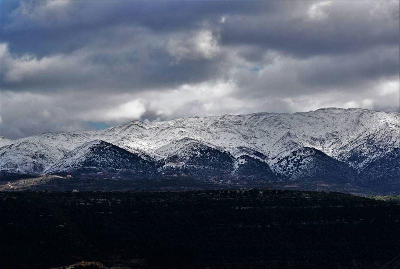 When snow falls, nature listens. ❄💙 LebanonViews LebanonNature ... (Chouf)