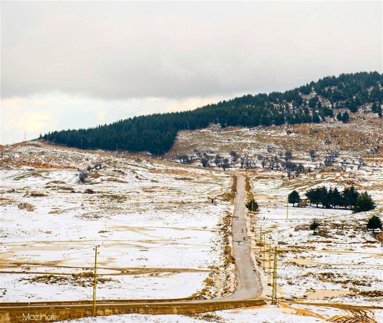Let The Winter Begin.. 😍 -_-_-_-_--_-_-_-_-_-_-_-_ snow winter snowy... (Falougha, Mont-Liban, Lebanon)