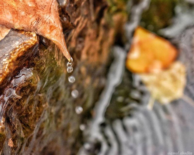 نقاط الماء المستمرة تتغلب على الصخر 👌👌 lebanon photography ...
