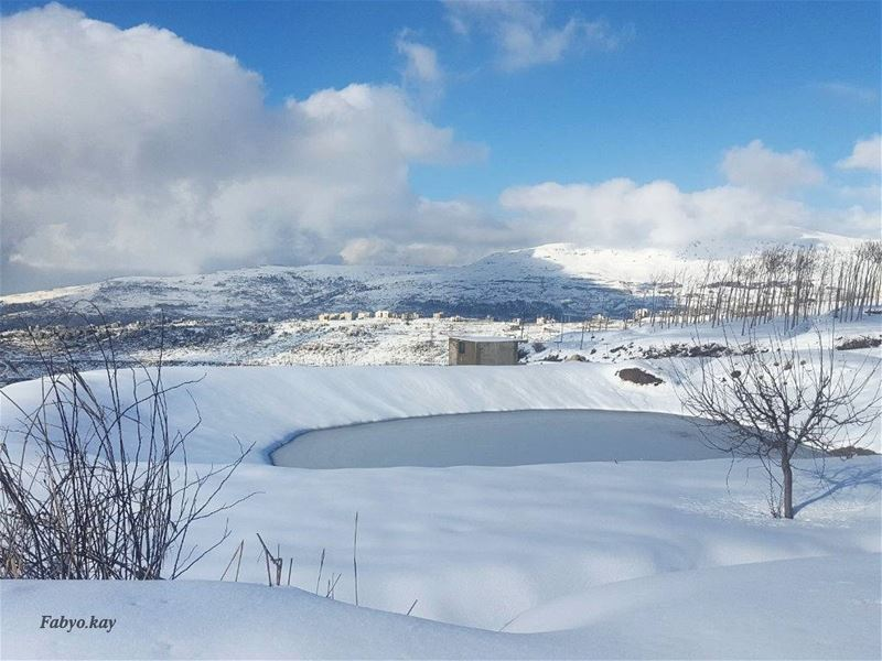Silience has a mysterious calming affect, allowing your soul to be a peace... (Mount Lebanon Governorate)
