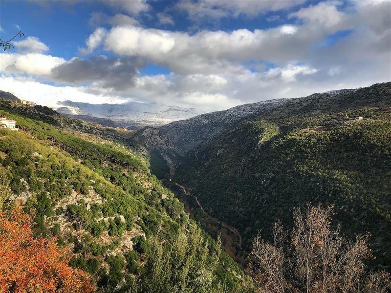 Snow - autumn mix ❄️🍁 (Baskinta, Lebanon)