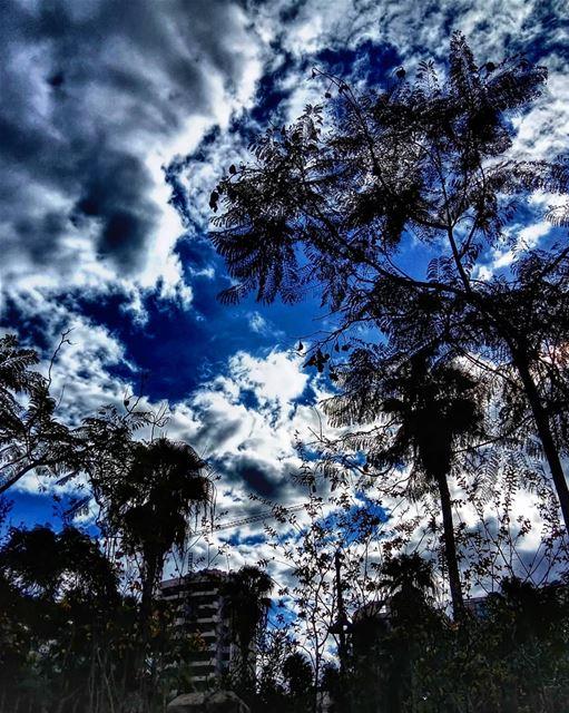 Beautiful chaos.•••• lebanon sky clouds cloudy cloudporn natureshot... (Beirut, Lebanon)