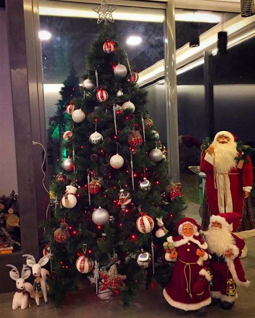 Christmas time 😃 lebanon batroun beirutingchristmas christmastree ... (Batroûn)