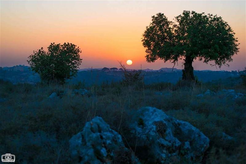 غروب و الليلة مش سوا ...تصبحون ✋ sun sunset lebanon southlebanon ...