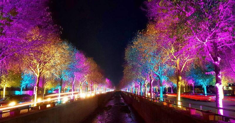 Champs-Élysées A la Zahlé... (Zahlé District)