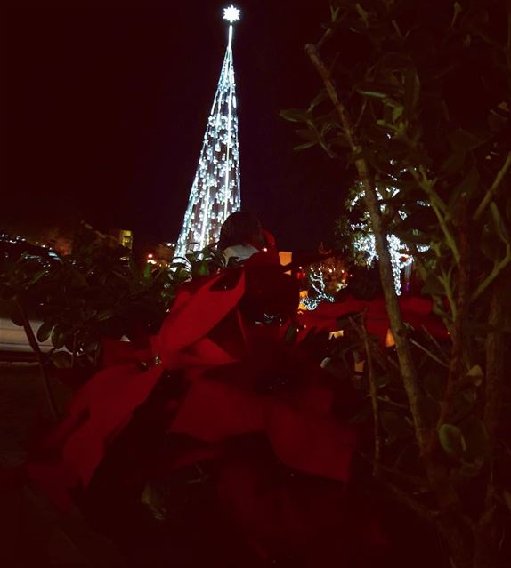 Christmas vibes from  Byblos Jbeil   LiveLoveByblos  LiveLoveJbeil   جبيل (Byblos - Jbeil)