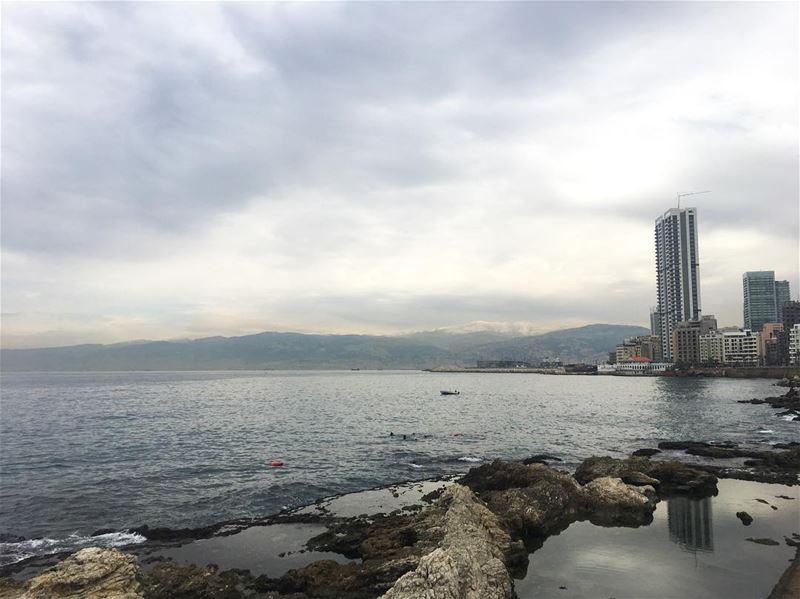 Can you spot the intruder? GoodMorning Beirut ... (Beirut, Lebanon)