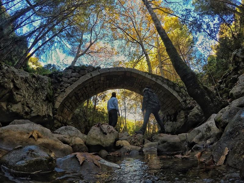 Life was meant for good friends and great adventures ... (Under The Bridge)