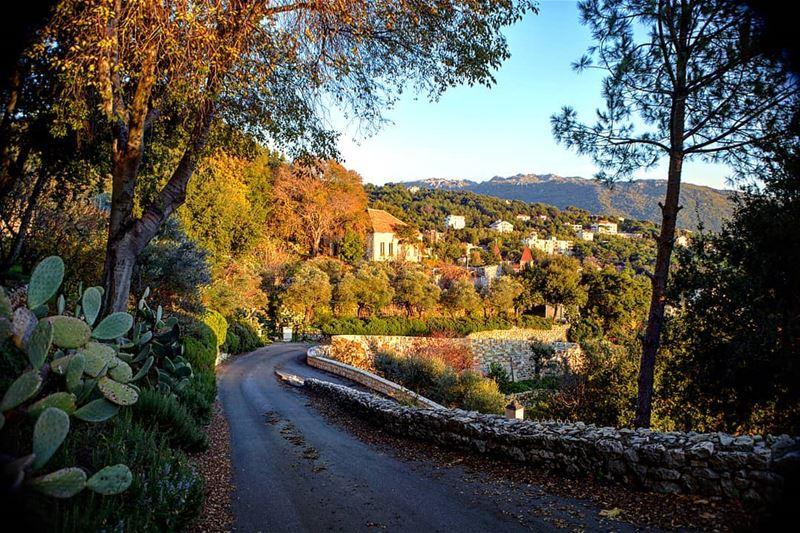 Paint me! 🍂🍁🍃 naturephotography greenery natureza autumn🍁 ... (El Kfour, Mont-Liban, Lebanon)