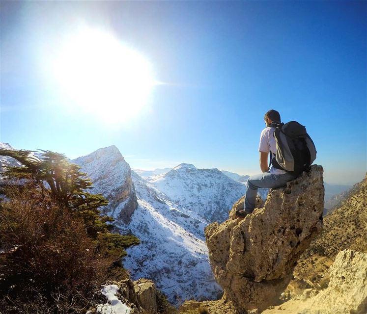 My throne, My peace of land.. My own kingdom of heaven ⛎... (Cedar Reserve Tannourine)