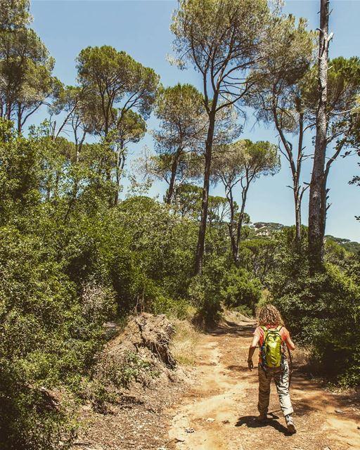 Location : Bkassine, Lebanon earthpix earthofficial exploretocreate ... (Bkâssîne, Al Janub, Lebanon)
