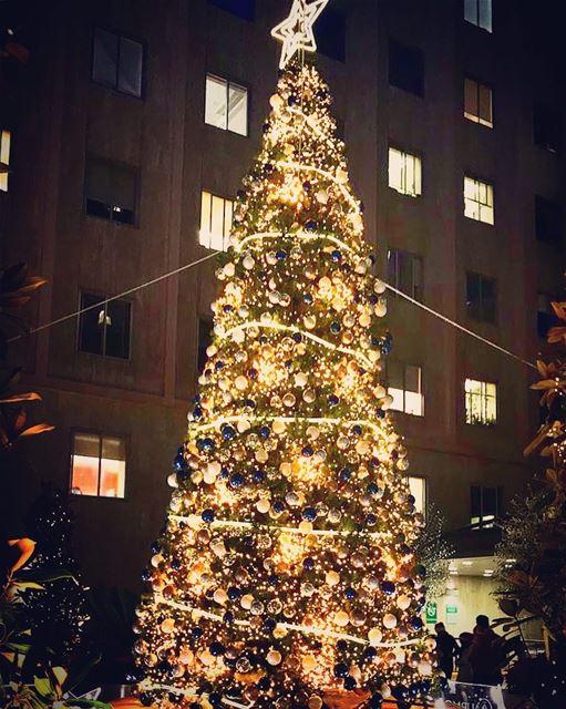 Christmas Spirit at AUBMC💫💫 @livelove.aub @aub_lebanon @aubmc_official ... (AUBMC - American University of Beirut Medical Center)