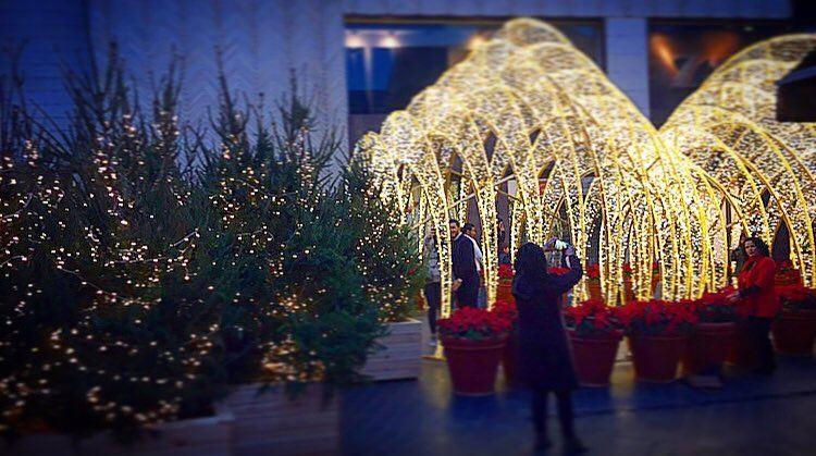 ضوي بليالي سعيدة..✨❤️ christmastime christmaslights ... (Beirut Souks)