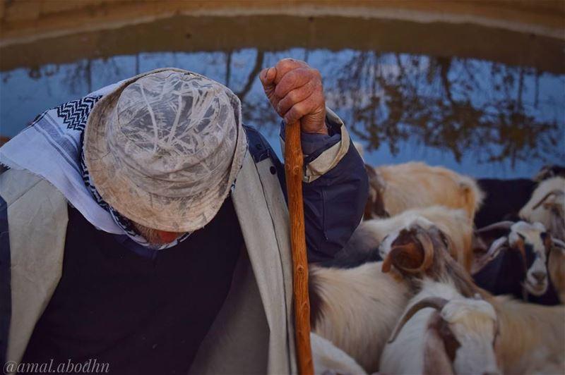 ما أبشع المخلوق اللذي يخلو قلبه من الهم،، التعب وحده هو زارع الجمال في الح (حاصبيا)