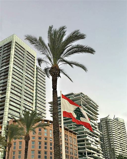 Have a wonderful day everyone ☺.. beirut lebanon architectlovers ... (Zaitunay Bay)