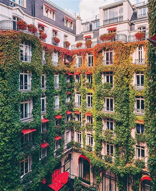 There is no Paris without Plaza Athénée ❤️@plaza_athenee Picture by my fav... (Plaza Athénée)