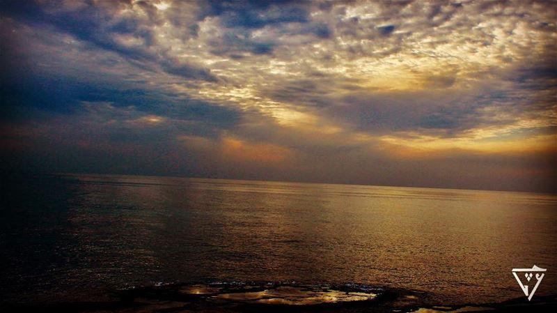 water oasis in the sea wildlifephotography wildlifephotography ...